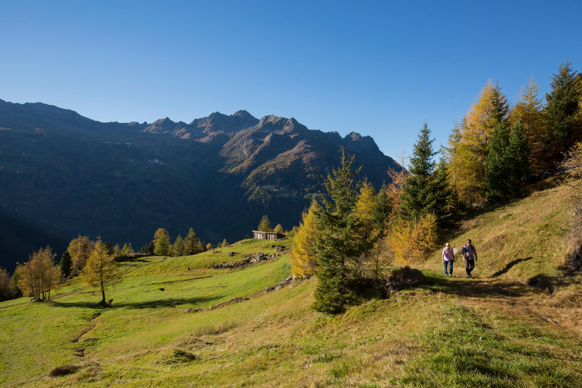 Herbstwanderszene bei der Stallwiesalm, Oetztaler Alpen, Tirol, Oesterreich.